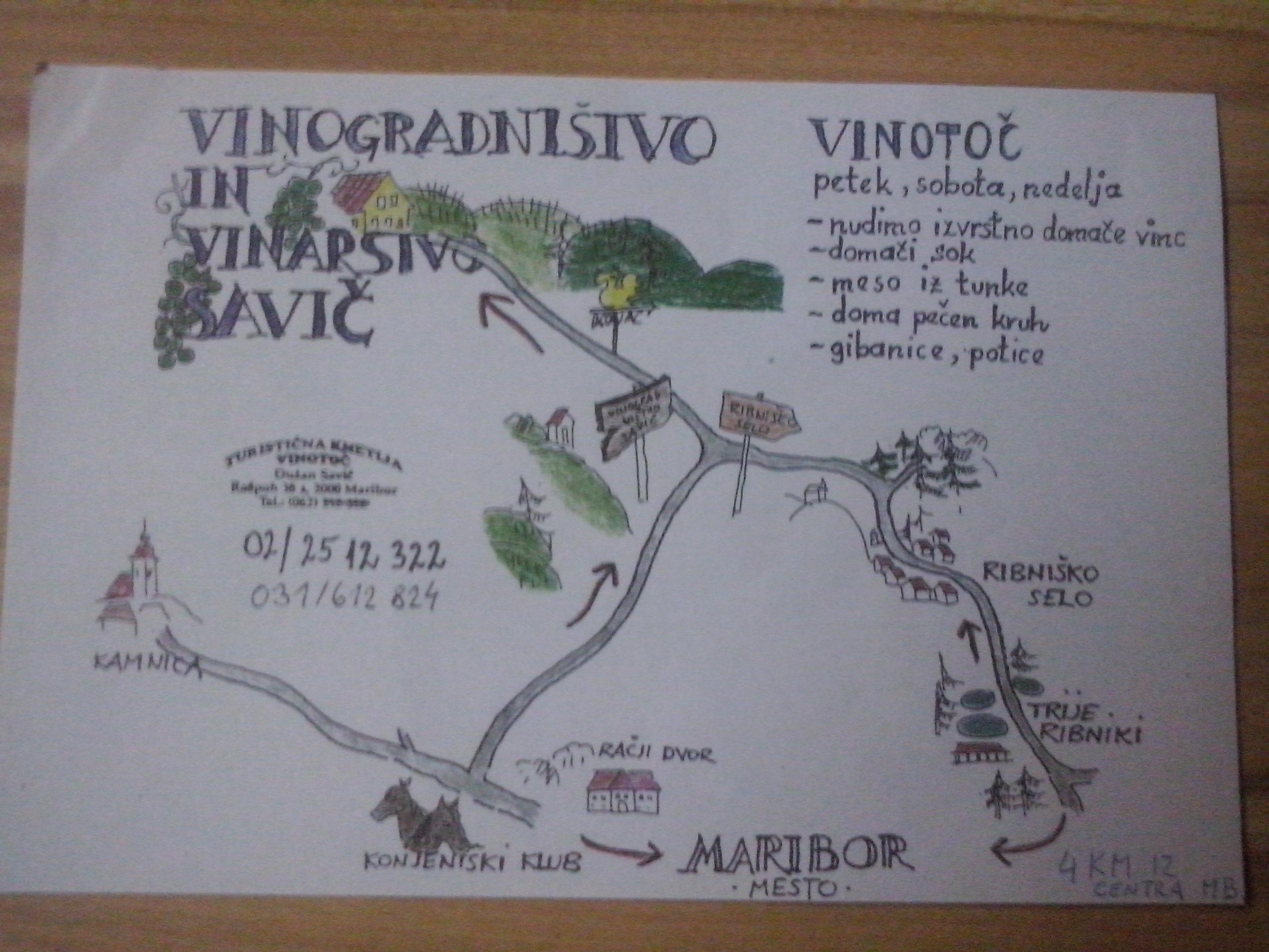 vinograd 007